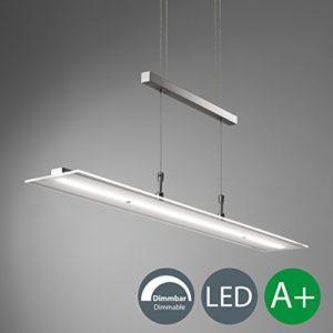 Lampadario LED a sospensione luce dimmerabile lampada da soffitto regolabile in altezza per cucina luce calda metallo color nickel opaco e vetro 1 luce LED integrata 20W I 230V I IP20